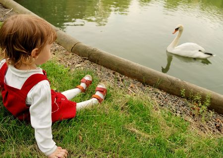 Little girl sitting on the green grass and looking at the swan in the lake that swam up to bank. photo