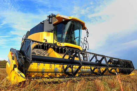 yellow combine in the field of buckwheat over bright cloudy blue sky photo
