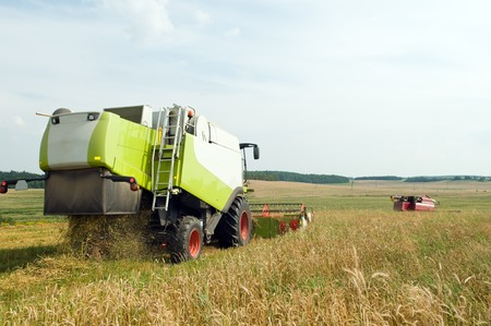 Two working harvesting combines in the summer field of wheat cereals photo