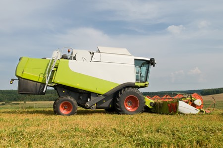 working harvesting combine in the field of wheat cereals photo