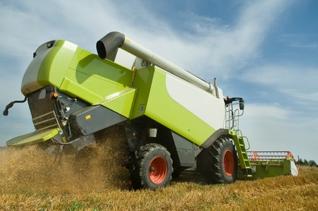 combine: Rear view of green working harvesting combine in the cereals field Stock Photo