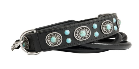inlaid: leather dog leash and collar inlaid with stones isolated