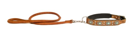 dog collar: leather dog leash and collar inlaid with stones isolated