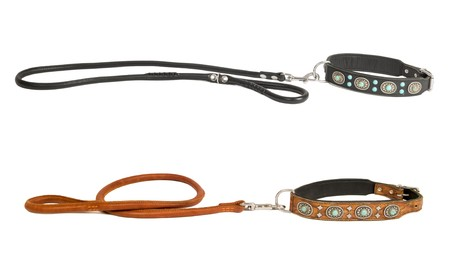 Two leather dog collars inlaid with stones and leashes isolated photo