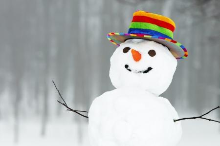 januar: ein Winter Schneemann mit farbigen-Einschraubbarer Standing in Gesamtstruktur im freien
