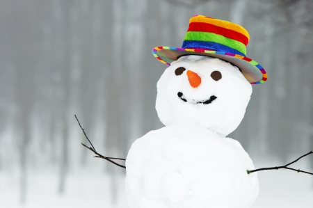 fun colors: one winter snowman with coloured top hat standing in forest outdoors