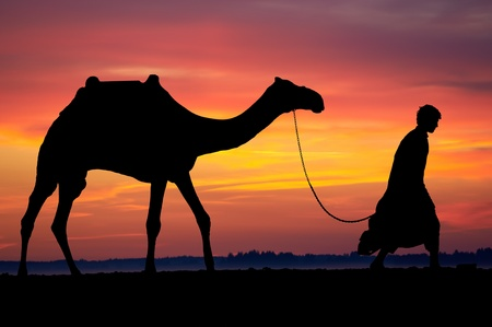 Silhouette of Arab with camel at sunrise photo