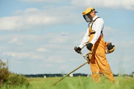 gras maaien: Gras trimmer werkt Stockfoto