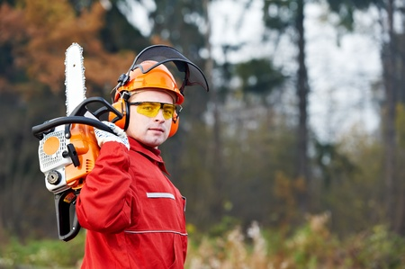 woodcutter: Lumberjack Worker With Chainsaw In The Forest Stock Photo