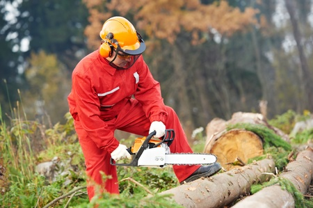 leñador: Leñador trabajador con motosierra en el bosque Foto de archivo