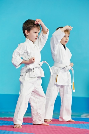 two boys make karate exercises photo
