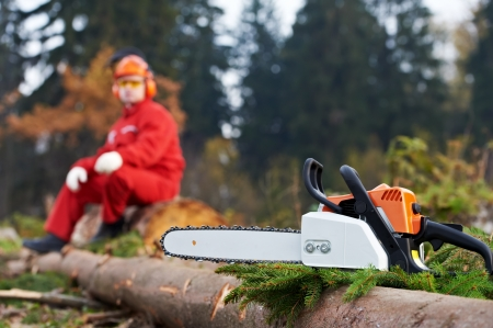 Lumberjack Worker With Chainsaw In The Forest Stock Photo