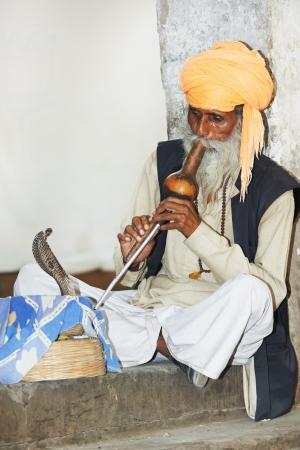 serpiente cobra: encantador de serpientes en la India