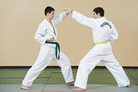 defense: Two man at taekwondo exercises Stock Photo