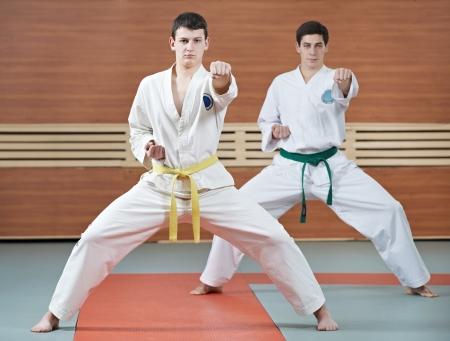 self exam: Two man at taekwondo exercises Stock Photo