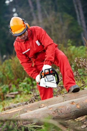 Lumberjack Worker With Chainsaw In The Forest photo