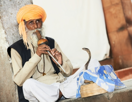 Hindu Snake charmer adult man in turban playing on musical instrument before snake at a basket Stock Photo - 21810519