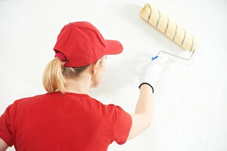 priming paint: One female house painter worker painting and priming wall with painting roller Stock Photo