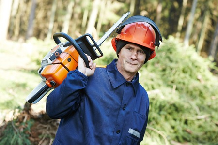 felling: Portrait of lumberjack logger worker in protective workwear with chainsaw at forest Stock Photo