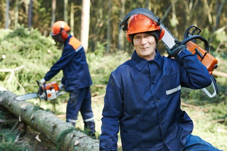 woodcutter: Portrait of lumberjack logger worker in protective workwear with chainsaw at forest Stock Photo