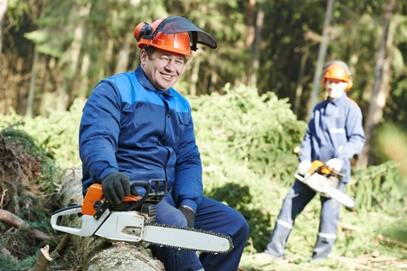 logger: Portrait of lumberjack logger worker in protective workwear with chainsaw at forest Stock Photo