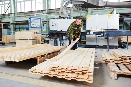 Worker of wood processing manufacture operating on woodworking machine photo