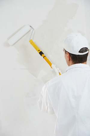priming paint: One male house painter worker painting and priming wall with painting roller