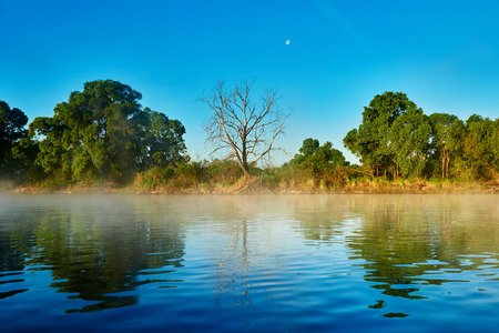 early fog: picturesque reflective landscape of river with misty fog in early summer morning