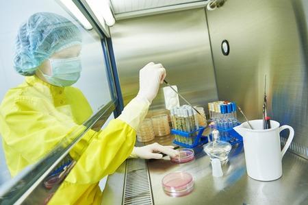 femme chercheur en sciences en uniforme et l'équipement de protection fonctionne avec dangereuse matériel viral de danger au laboratoire de microbiologie