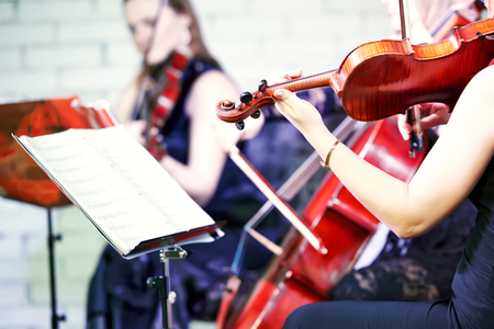 Hand of female violin player musician playing music at entertainment party
