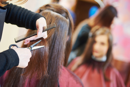 haircutting: Hands of female professional hair stylist with shears and comb during haircutting by hot thermal scissors in hairdresser salon Stock Photo