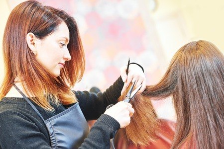 haircutting scissors: female professional hair stylist with shears and comb during haircutting by hot thermal scissors in hairdresser salon