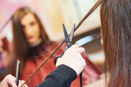 haircutting: female professional hair stylist with shears and comb during haircutting by hot thermal scissors in hairdresser salon