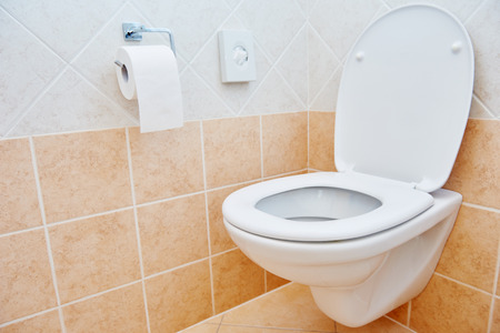 bowl sink: Clean toilet sanitary sink or bowl with open lid unit in bathroom