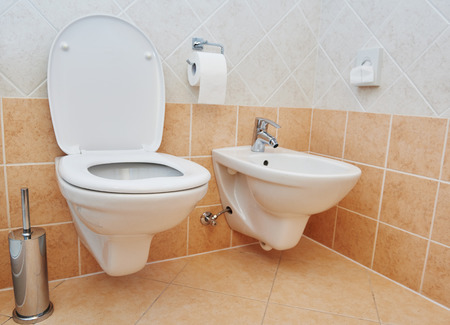 bowl sink: Clean toilet sanitary sink or bidet bowl with open lid unit in bathroom Stock Photo