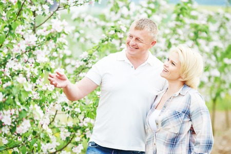 landlady: Happy adult young couple in love together in blooming apple orchard
