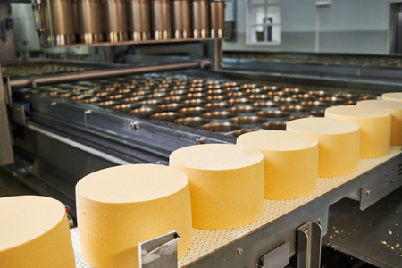 industrial Cheese production. dairy industry Archivio Fotografico