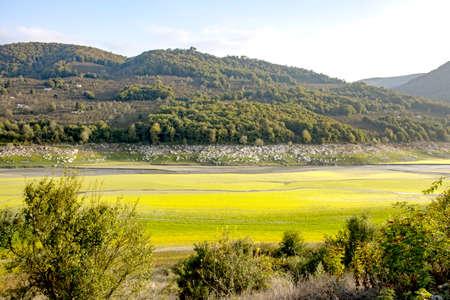 plateau, pond, natural life, animal paradise - Duzce - Turkey