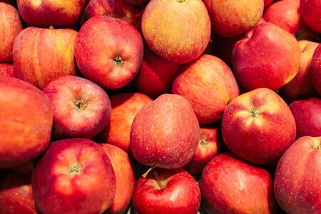 agriculture Fruit apples in the store Foto de archivo