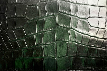Crocodile texture Stock Photo