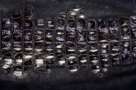 Natural crocodile leather