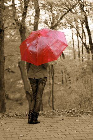 The girl with a red umbrella autumn yellow photo