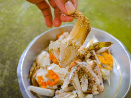 luscious: crab for cooking with hand , hot and spicy fried crab