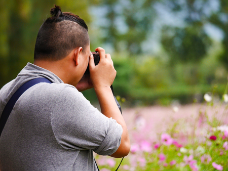 asian tourist is taking a photo in cosmos flower field blur  background 写真素材