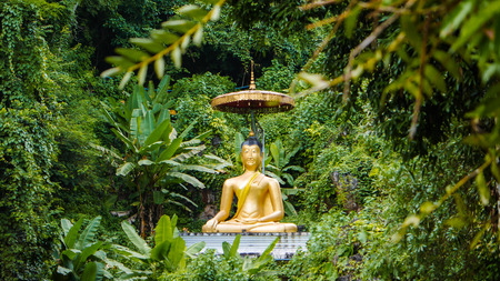 golden buddha statue with big umbrella