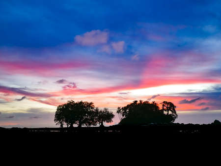 colourful twilight sky backgroun after sunset time, silhouette tree and island Standard-Bild