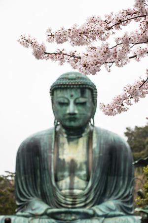 kamakura: The Great Daibutsu, Buddha of Kamakura , a bronze statue of Amida Buddha in Kotokuin Temple, Kamakura, Kanagawa, Japan Stock Photo