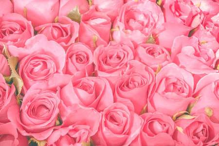 Pink Roses bouquet background, set of Beautiful flower pattern, Valentine concept