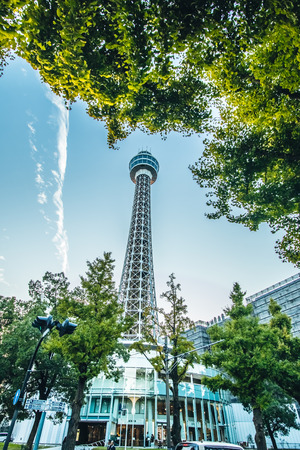 Street view look up from Ginkgo tree and Yokohama Marin Tower with an observation deck in sunset lights, Yokohama bay, Japan. Stock Photo