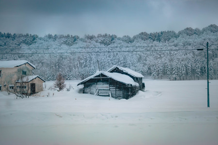 House and hut covered by snow. snow storm is coming in  Winter rural landscape.  Forest Trees in fresh day at Hokkaido, Japan.